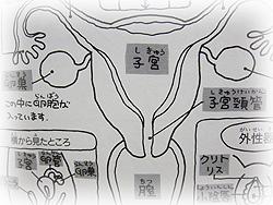 f30blog01873.jpg