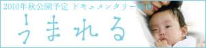 banner300_70.jpg