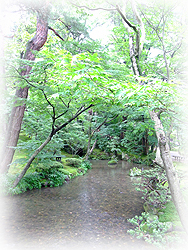 kanazawa008.jpg